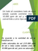 LODOS SALADOS-2