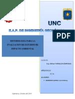 Metodologia de Evaluacion EIAs