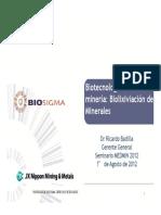 01_Ricardo_Badilla.pdf