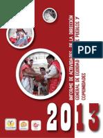 Informe Direccion 2013