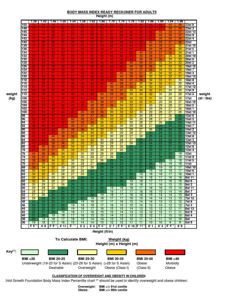 BMI Chart Metric and Imperial