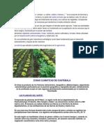 Agricultura en Guatemala Zonas Climaticas