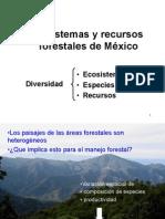 03 Ecosistfor México 14b