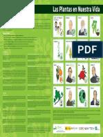 Poster Plantas a3 Web
