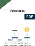 2.3.1-Fotosintesis
