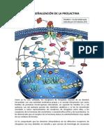 Via de Señalización de La Prolactina