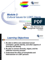 Module 2 Cultural Issues.ppt