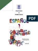 Plan español anual 1