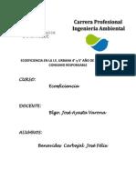 ECOEFICIENCIA en LA I.E.urbana_ Consumo Responsable_avanca