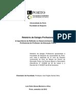 Relatório de Estágio Profissional
