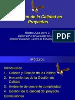 Gestion de La Calidad en Proyectos 2008