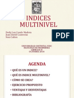Indices Multinivel