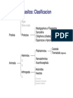 Parasitos Protozoos - Microbiologia Farmacia.pdf