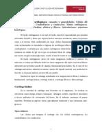 tema10-tejido-cartilaginoso.pdf