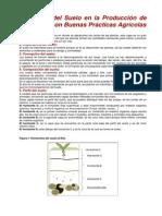 El Manejo Del Suelo en La Producción de Hortalizas Con Buenas Prácticas Agrícolas
