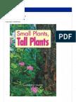 Tall Plant Small Palnts