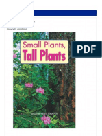 Tall Plant Small Palnts
