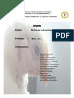Informe Biofisica Yey (2)