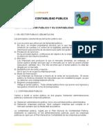 Apuntes de Contabilidad Publica1