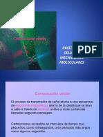 Recepcion Celular - Mecanismos Moleculares Ppt Mod