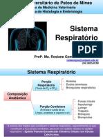 3.Sistema Respiratório