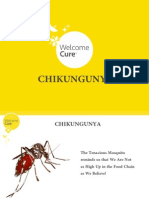 Faster Recovery From Effects & After-Effects of Chikungunya With Homeopathy!