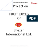 Shezan Project Marketing 2009
