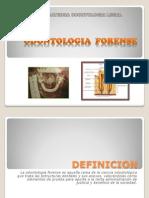 Odontologia Forense (1)3