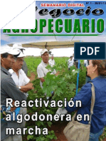 NEGOCIO AGROPECUARIO - N 1 - 28 01 13 - PARAGUAY - PORTALGUARANI