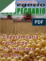 NEGOCIO AGROPECUARIO - N 7 - 11 03 13 - PARAGUAY - PORTALGUARANI