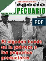 NEGOCIO AGROPECUARIO - N 12 - 10 06 13 - PARAGUAY - PORTALGUARANI