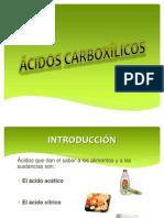 ÁCIDOS CARBOXÍLICOS (Exposicion).pptx