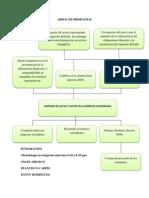 Arbol de Problemas sobre implementacion de las NIIF