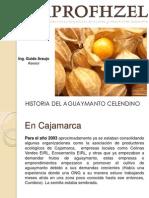Historia Del Aguaymanto Celendino - APROFHZEL