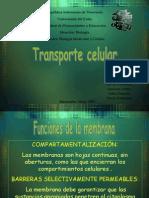 Transporte Celular.