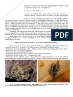 Keeping Asian Treefrogs of the Genus Theloderma in Captivity Adv-libre