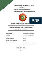 Universidad Nacional Hermilio Valdizán Huánuco