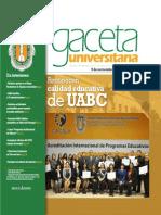 Gaceta 333