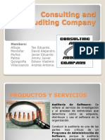 Consulting and Auditing Company