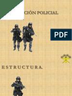 Funcion Policial