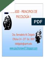 Introduccion a La Psicologia Verano 2007