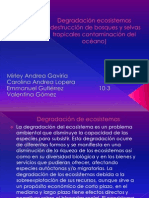 Degradación ecosistemas (destrucción de bosques y selva (1).pptx