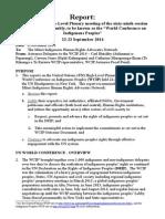 Report UN WCIP 24sep14_final