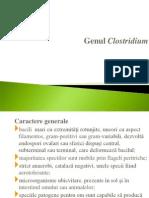 Genul Clostridium)