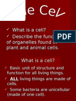 What is a Cell?  Describe the Functions of Organelles