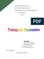 microonda lisy.docx