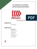 Marketing Plan for New Pen Drive (Dilato) launch..