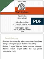 Referat Powerpoint - Meig