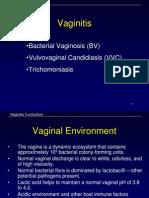 Vaginitis Slides 2013