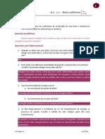 Bola_Saltitona_-_versao_professor.pdf